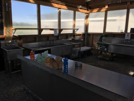 New stainless steel washing area at DeLaney Community Farm